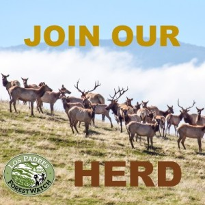 Join Our Herd - Elk 400