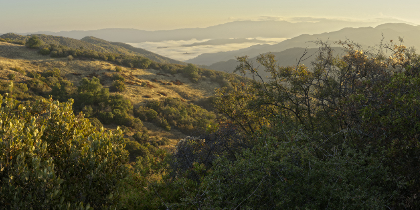 Santa Lucia Wilderness Addition; image courtesy Jeff Jones, Lumnos Photography