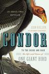 condor-brink