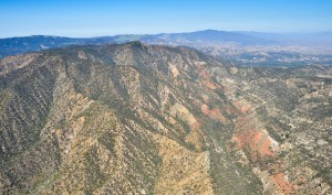 Fox Mountain Roadless Area