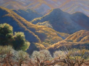 """Morning in Los Padres Forest"" Dotty Hawthorne, pastel, 16"" x 21.5"" unframed, 25"" x 30.5"" framed $1,200 Also available as a giclee, 15"" x 20"" $185"