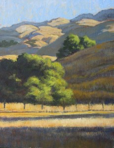 """Spreading Morning Light"" Dotty Hawthorne, oil, 14"" x 11"" unframed, 19.5"" x 16.5"" framed $775"