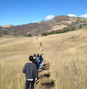 Volunteers hiking out to a grow site