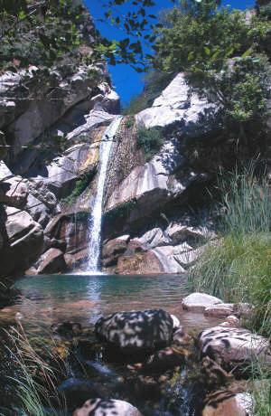 matilija falls 039 edited