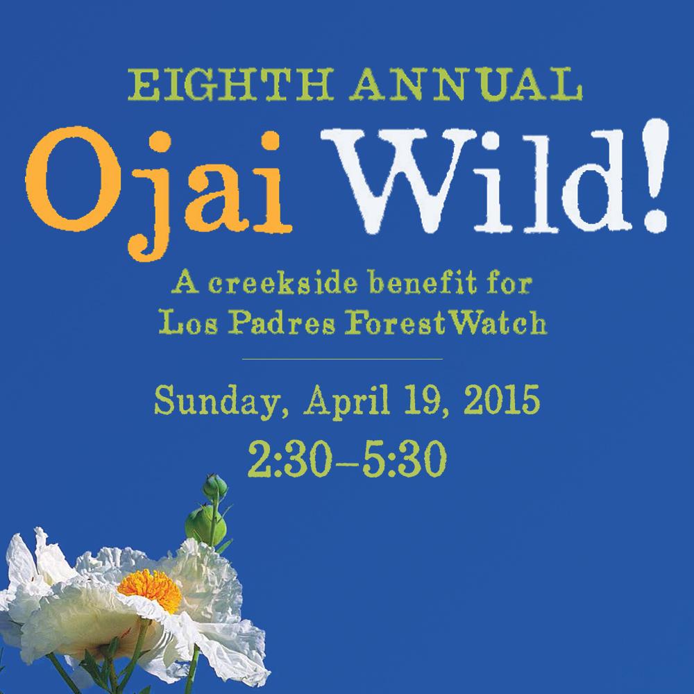 2015-Ojai-Wild-Square
